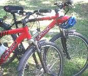 Excellent bikes