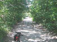 Bike trail in the woods