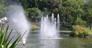 Fountains in lake at park in Funchal