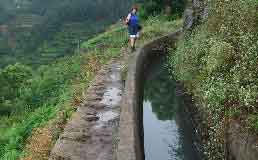 Walking the levadas, Madeira