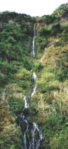 Waterfall on Madeira north coast road