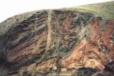 Exposed geological rock strata near the coast