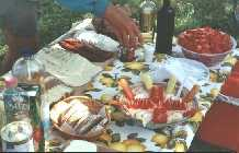 Typical Hungarian cycle tour pic-nic lunch