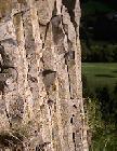 Basalt crystal columns on Suc de Chapteuil