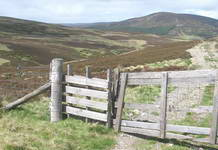 Typical walking route along tracks across the fells.